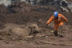 Buscas em Brumadinho ainda não têm data para acabar, dizem bombeiros