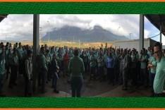 Vale informa sobre a retomada de operação na mina Alegria