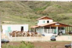 ALMG discute hoje 6 de dezembro permanência de fazenda da Epamig em Itabira