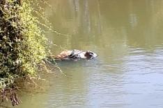 Homem é achado morto dentro de lagoa, com pés e mãos amarrados