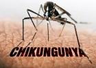 AEDES AEGYPTI: Itabira registra o primeiro caso de febre chikungunya