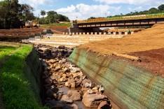 Vale lança projeto piloto de recuperação ambiental de área impactada