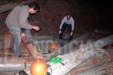 Operador de motosserra é encontrado pelo patrão em corte de eucaliptos no Ribeirão São José em Itabira