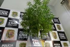PC prende três jovens suspeitos de envolvimento com o trafico de drogas em Itabira