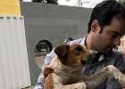 Após audiência pública Câmara de Itabira promove capacitação sobre Bem-estar Animal