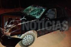 Mais um acidente envolvendo animal solto em pista é registrado na rodovia MG-129 em Itabira