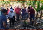 Produtores de banana de São Gonçalo recebem capacitação em Dia de Campo