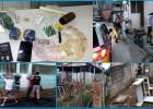 Combate ao Trafico PM apreende grande quantidade de drogas nos bairros Eldorado e Jardim das Oliveiras