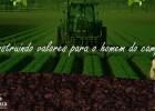 Município já comprou quase 700 mil em produtos da agricultura familiar