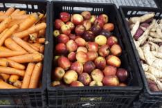 Agricultura e Abastecimento – Banco de Alimentos recebe mais de três toneladas em doações