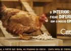 Cine SESI Cultural ocupa pracinhas com cinema no interior de Minas de 01 a 03 de setembro em Santa Maria